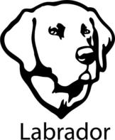 Wandtattoo Hund Labrador